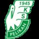 Pelikan Lowicz